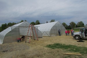 Hoop house Construction 2013 014
