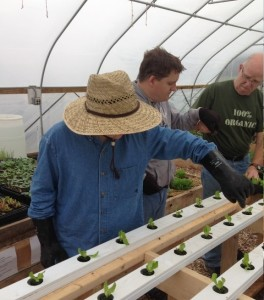 Charley and Christopher help Bob place young seedlings into the system.